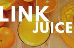 Qué es el link juice y por qué es tan importante en tu posicionamiento SEO
