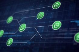 claves de Whatsapp business